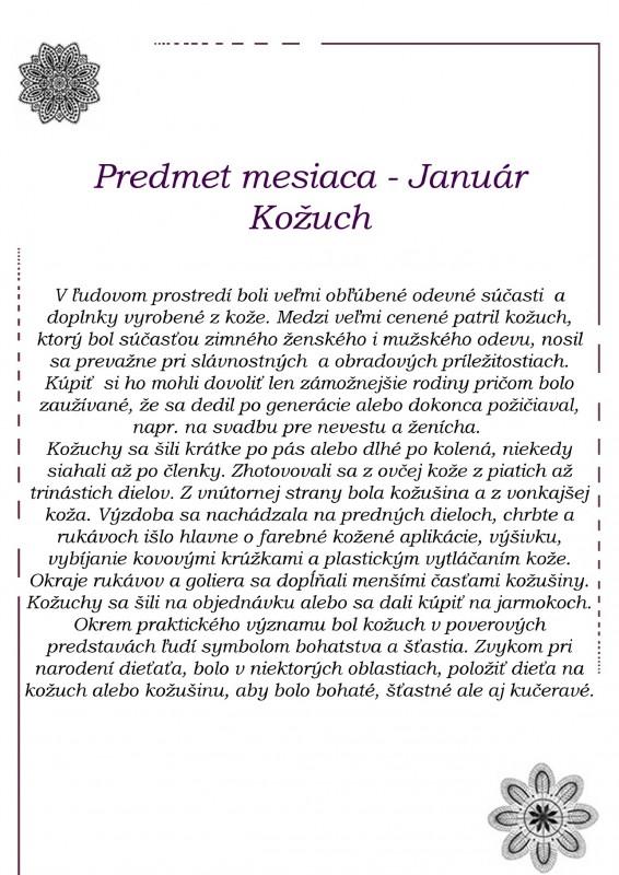 Program_SNM-predmet