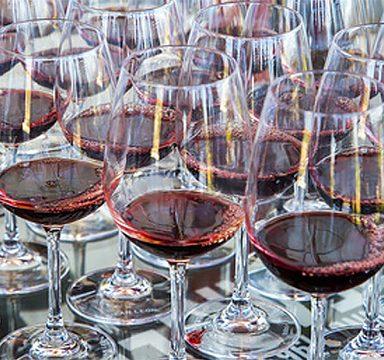 wine tasting tour_1