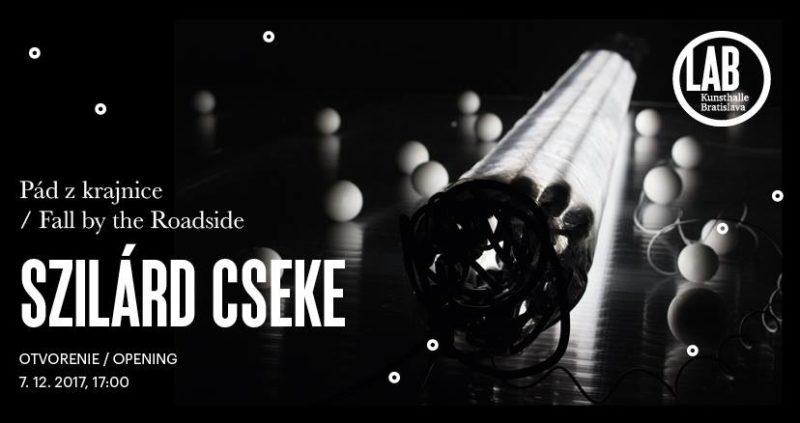 SZILÁRD CSEKE: FALL BY THE ROADSIDE